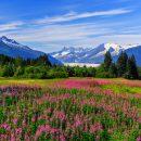Les sites touristiques à visiter en Alaska