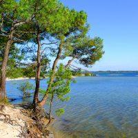 Mobile home à louer à Sanguinet plage : Vos plus belles vacances en France