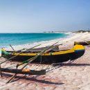 Madagascar, l'île qui fait rêver
