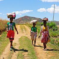 Madagascar ou l'île aux mille visages