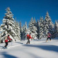 Où faire du ski en 2017 ?