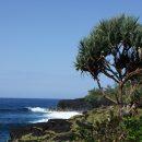 Un voyage de détente et de dépaysement à la Réunion