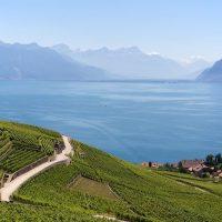 Les meilleurs endroits pour une virée en voiture à Lausanne