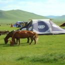 Une Mongolie Authentique !
