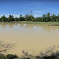 Tourisme en Isère – La pêche à l'étang Détente