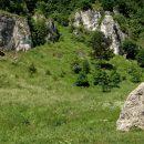 Vacances d'été en Haut Jura : des idées d'activités pour un séjour inoubliable