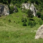 rocks_limestones_hiking_landscape_nature_poland_tourism_jura_krakowsko_cz_stochowa-608834.jpg!d
