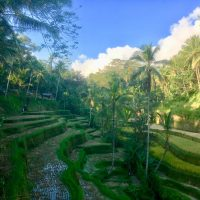 Pourquoi Bali est-elle une destination qui attire autant de touristes ?