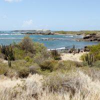 Partir étudier en Martinique : zoom sur une nouvelle vie !