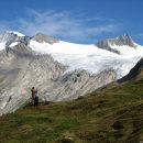 Les Alpes, paradis des randonneurs et des sportifs amateurs de sensations fortes