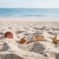 Quel camping choisir en Loire-Atlantique (44) au bord de la mer ?