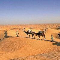 Les plus beaux lieux touristiques de Tunisie pour un voyage inoubliable